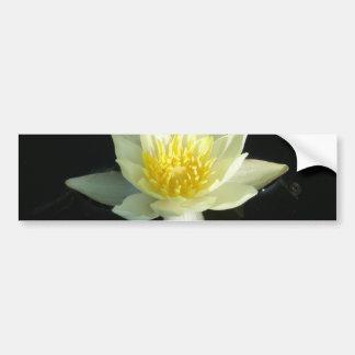 White Water Lily/Lotus Car Bumper Sticker