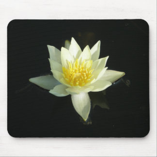 White Water Lily/Lotus Mouse Pad