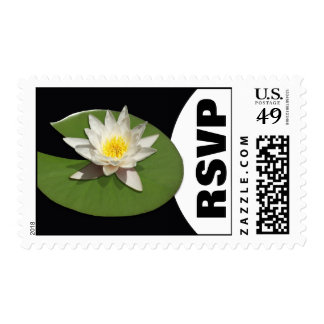 White Water Lily Pad - RSVP Postage Stamps