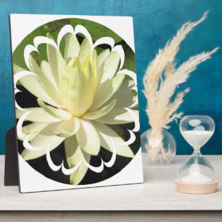 White Water Lily Plaque