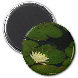White Waterlily I 2 Inch Round Magnet