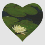 White Waterlily I Peaceful Floral Photography Heart Sticker
