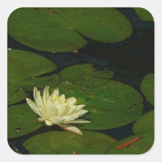 White Waterlily I Square Sticker