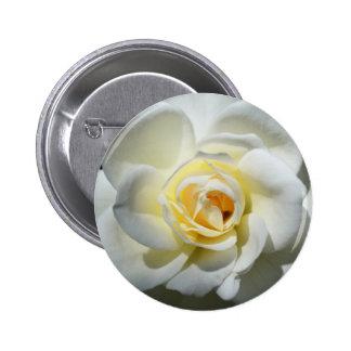 White Wedding Rose Button