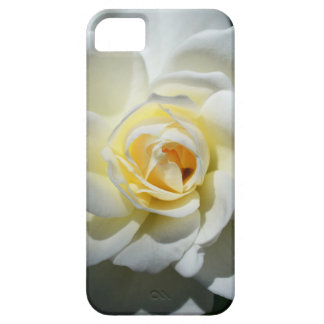 White Wedding Rose iPhone 5 Covers