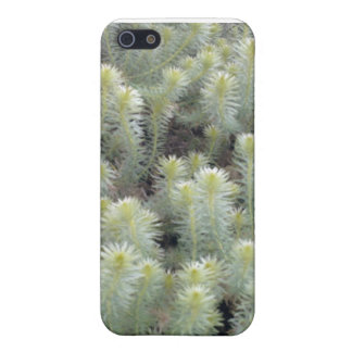 White weed 1 case for iPhone 5