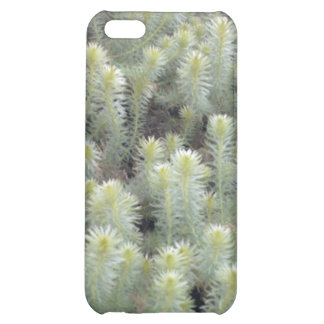 White weed 1 cover for iPhone 5C