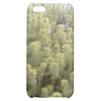 White weeds iPhone 5C covers