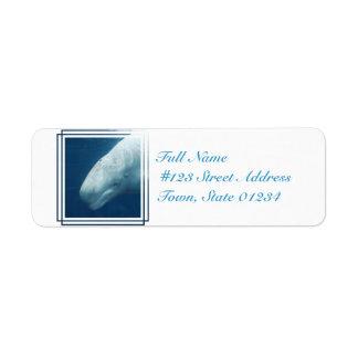 White Whale Return Address Label