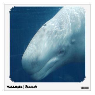 White Whale Wall Decal