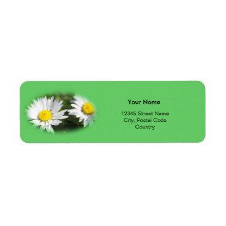 white wild daisy flowers label