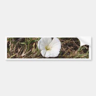 White Wild Flower Bumper Sticker