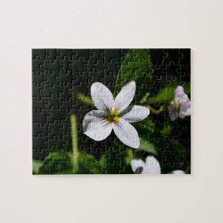 White Wild Flower in the Sandia Mountains puzzle