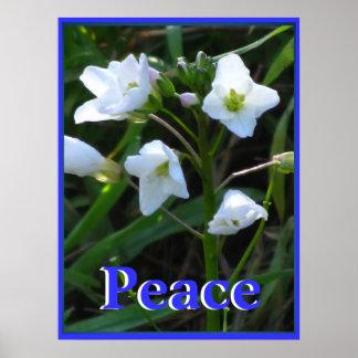 White Wild Flowers Print