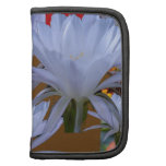 WHITE Wild Lilly Flowers  Greetings gifts bLESSING Organizers