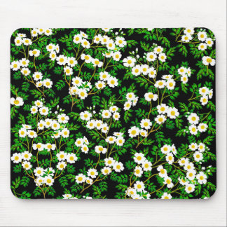 White Wild Rose Flowers Mousepad