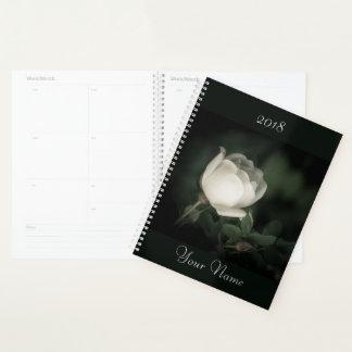 White Wild Rose on a Dark Background. Add text. Planner