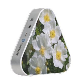 White Wild Roses Bluetooth Speaker