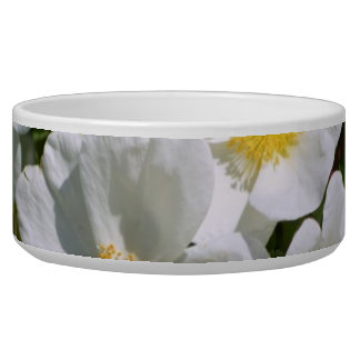 White Wild Roses Bowl