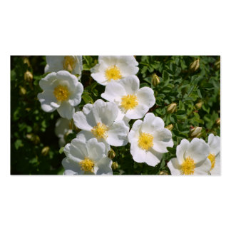 White Wild Roses Business Card Template