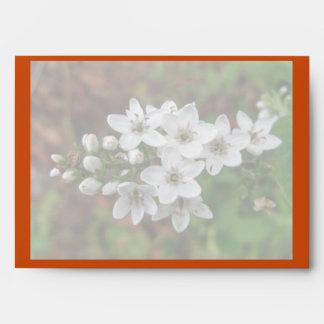 White Wildflower & Bee Fly Envelope