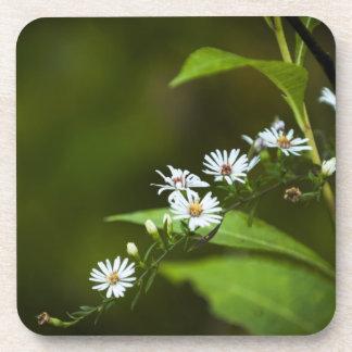 White Wildflower Beverage Coaster