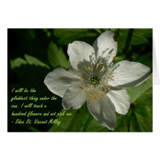 White Wildflower Edna St Vincent Mallay Card