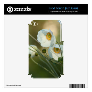 white windflowers in a natural display decal for iPod touch 4G