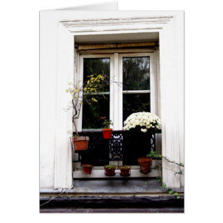 White Window Card
