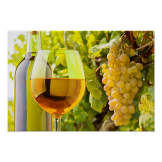 White Wine And Grapes Poster