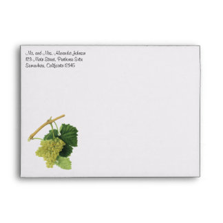 White Wine Grapes on the Vine, Vintage Food Fruit Envelope