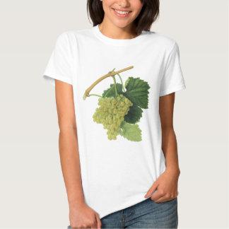 White Wine Grapes on the Vine, Vintage Food Fruit T-Shirt