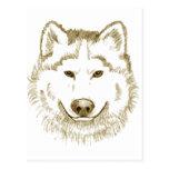 White Wolf 2 Postal