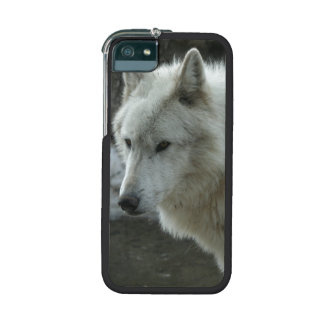 White Wolf iPhone 5/5S Cases