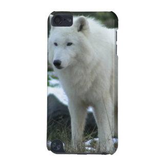 White Wolf en invierno Funda Para iPod Touch 5