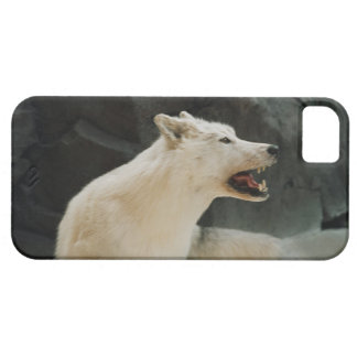 White Wolf Funda Para iPhone 5 Barely There