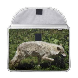 White Wolf Grey Wolf Wild Animal MacBook Case