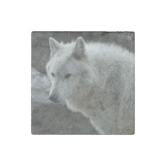 White Wolf Imán De Piedra