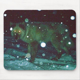 White Wolf in Snow Mouse Pad