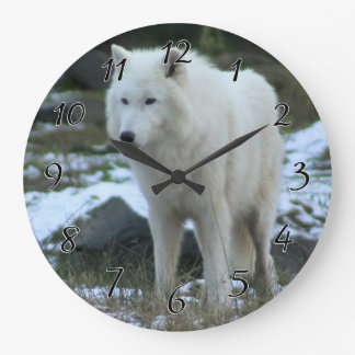 White Wolf in Winter Wall Clocks