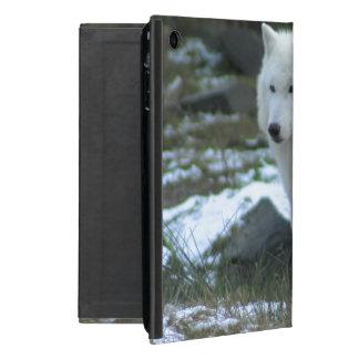 White Wolf in Winter iPad Mini Cover