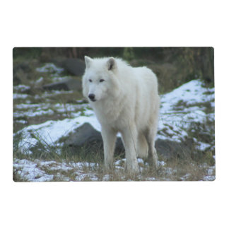 White Wolf in Winter Laminated Place Mat
