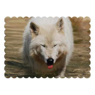 "White Wolf 5"" X 7"" Invitation Card"