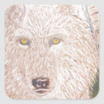 white wolf.PNG White Wolf Square Stickers