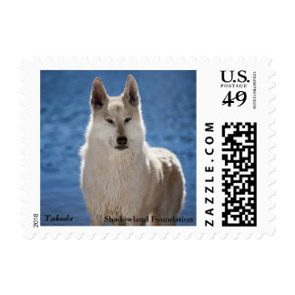White Wolf Postage Stamps