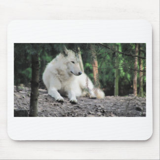 White Wolf Resting Mouse Pad