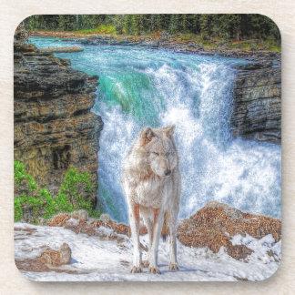 White Wolf & Rocky Mountain Waterfall Wildlife Art Drink Coaster