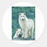 WHITE WOLF ROUND STICKERS