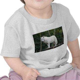 White Wolf salvaje Camisetas