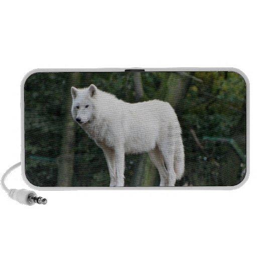 White Wolf salvaje Portátil Altavoz